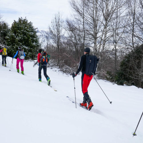 panticosa - yandel con esquís o raquetas de nieve
